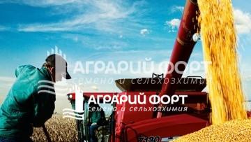 Фунгицид Абакус - BASF